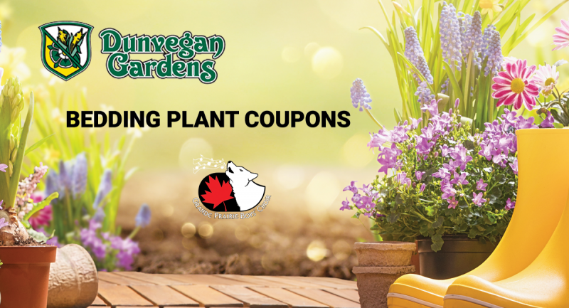 Dunvegan Garden Bedding Plant Coupon 2020